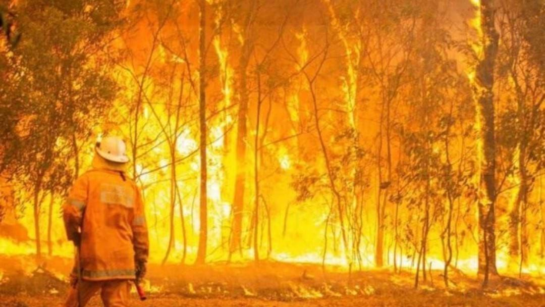 Article heading image for Here's An Update On The Eungella Dam Road Bushfires!
