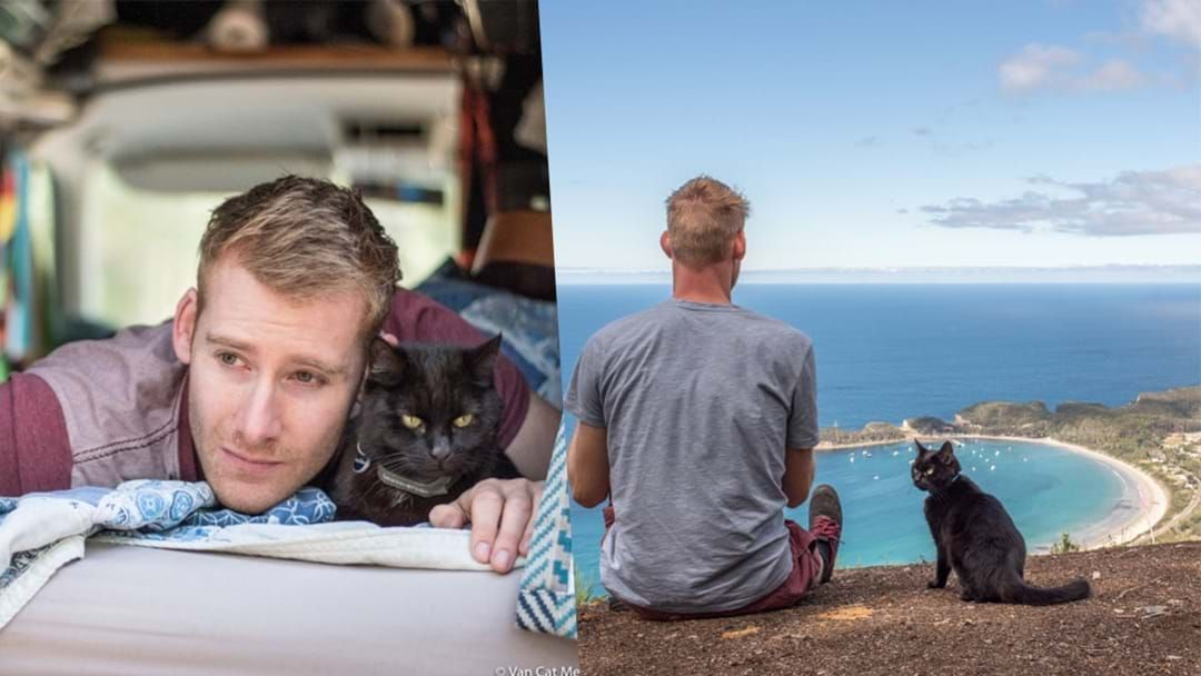Article heading image for This Guy Quit His Job & Travelled The World With His Cat
