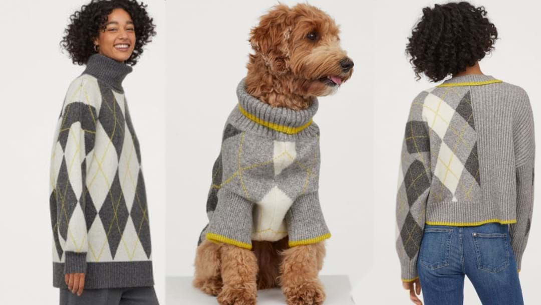 Article heading image for H&M Have Released Matching Dog & Owner Jumpers!
