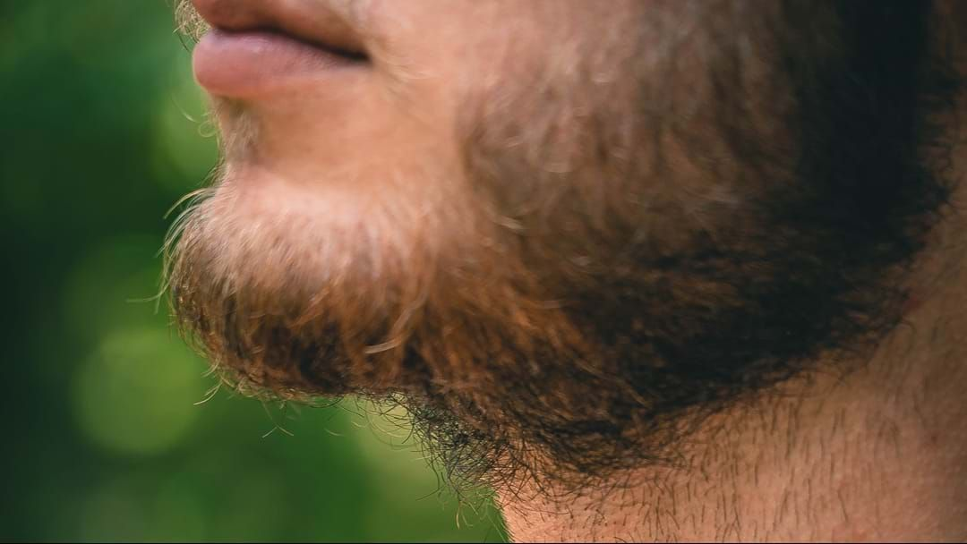 Article heading image for Mens' Beards Are Dirtier Than A Dog's Coat, Say Scientists