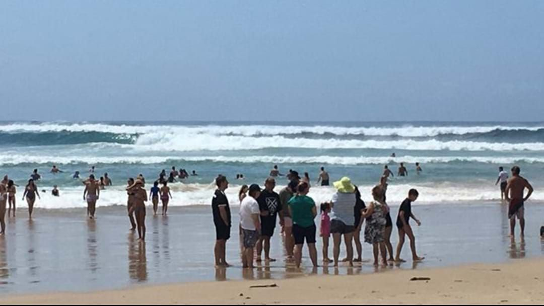 Article heading image for Extreme Surf Conditions Close Beaches Across SE Queensland