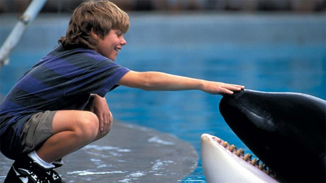 Article heading image for Here's What Happened To The Boy Who Played Jesse In Free Willy