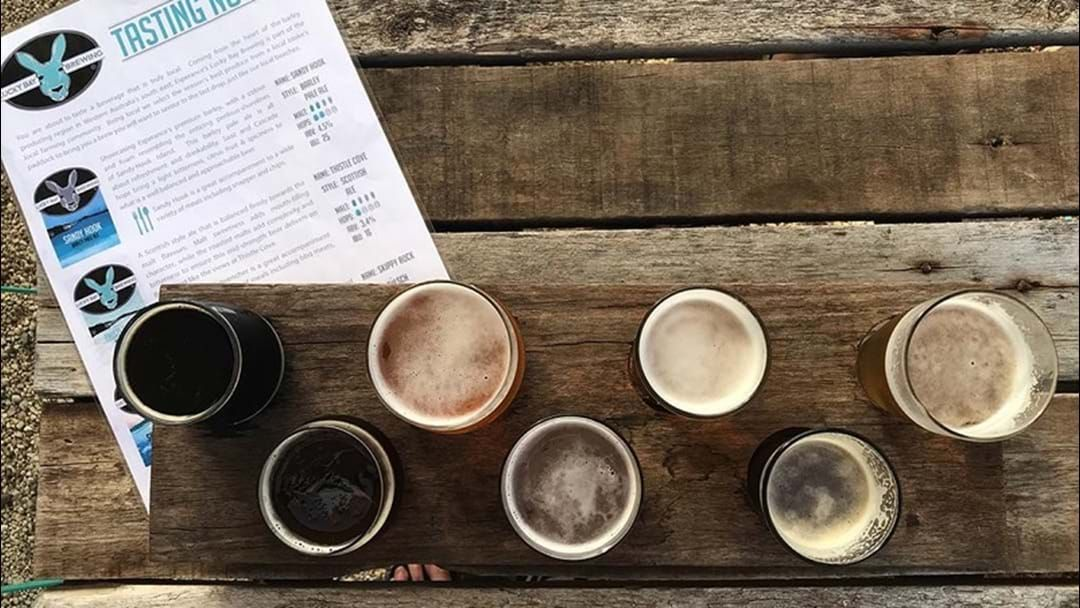 Article heading image for Questions and Answers about BEER!