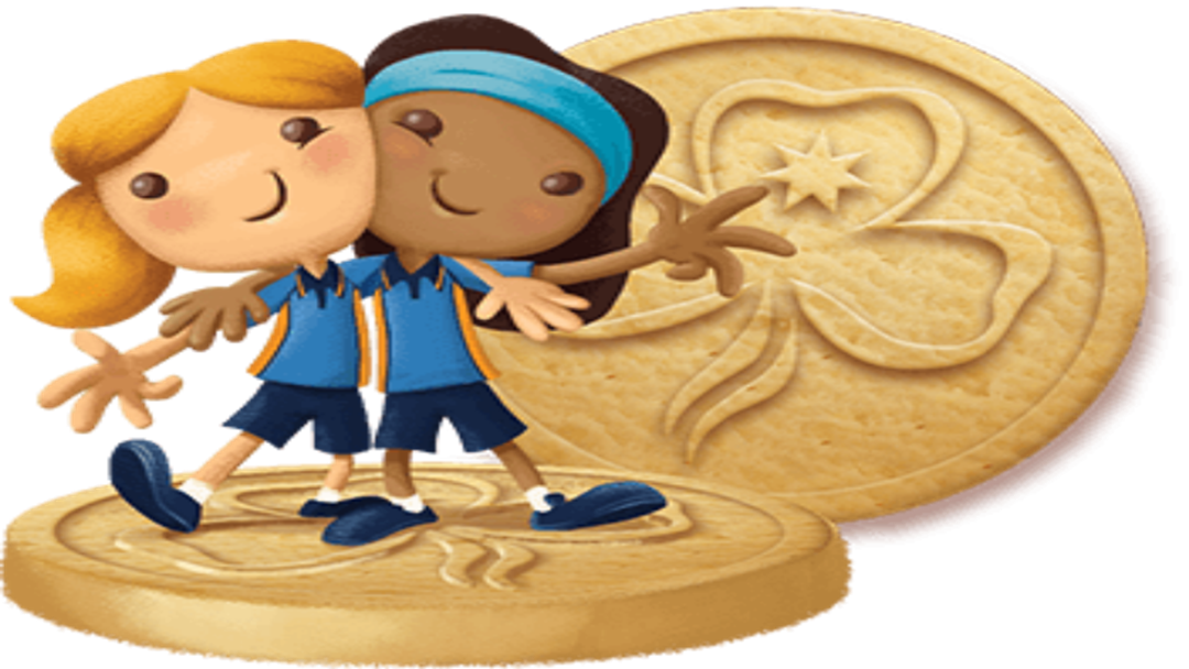 Article heading image for Girl Guides biscuits anniversary