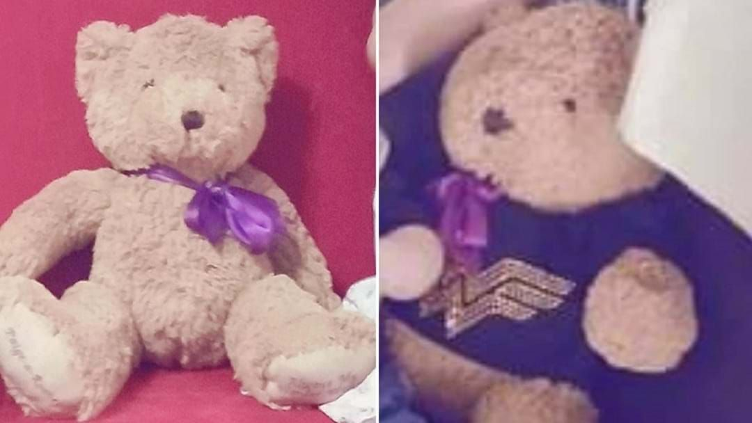 Article heading image for Flower Girl's Ashes Returned After Teddy Bear Disappearance