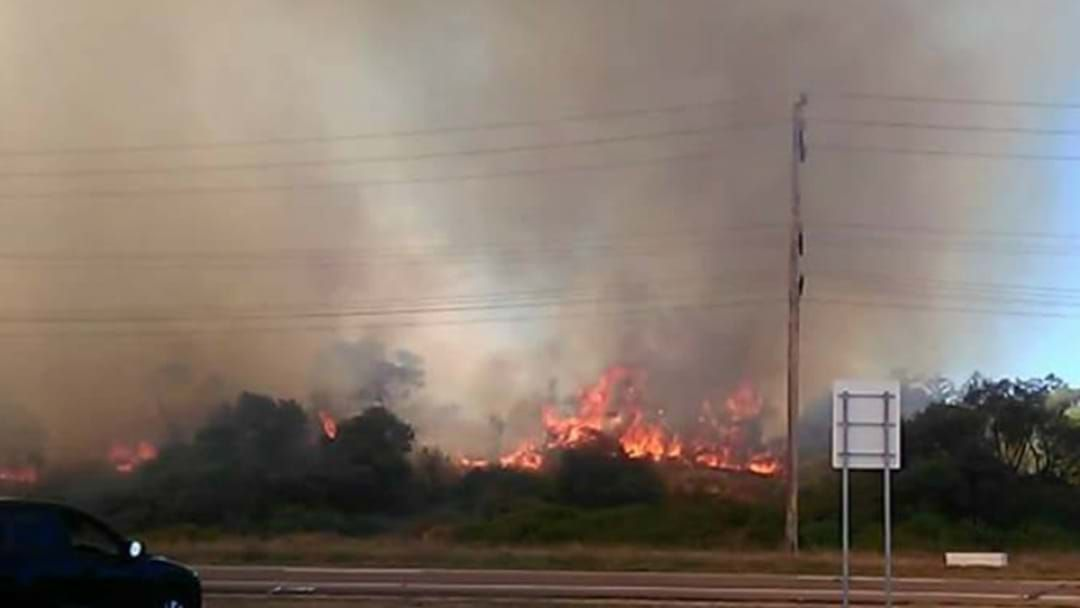 Article heading image for PHOTOS: Firefighters Contain Stockton Bushfire