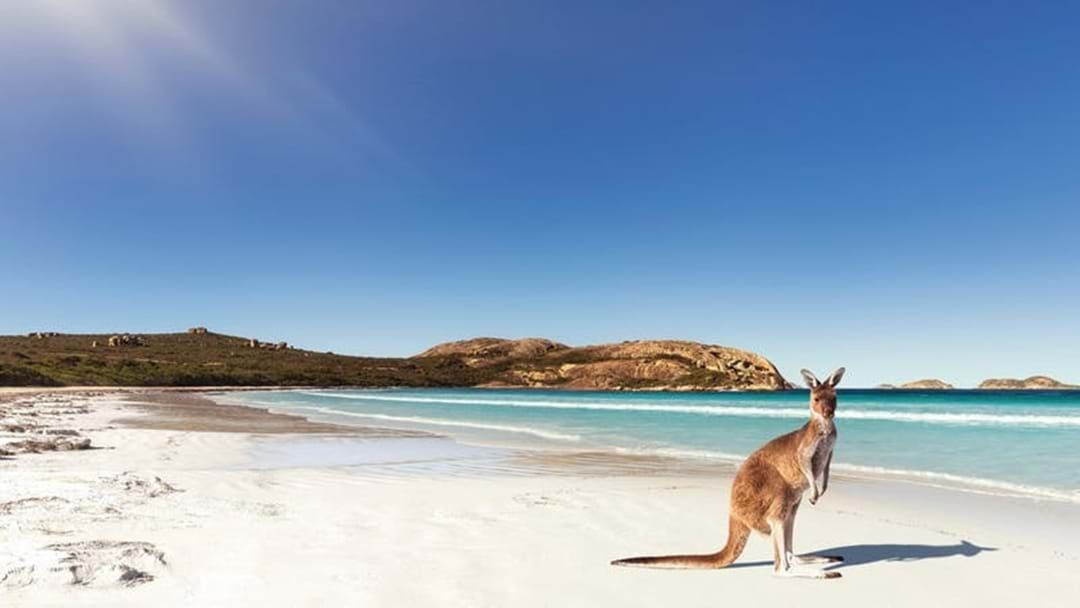 Article heading image for The pleasing ESPERANCE TOURISM NUMBERS...