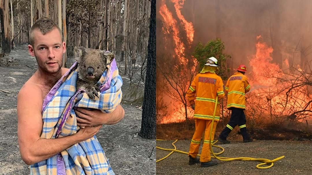 Article heading image for It's Official, Bushfires Have Now Killed Around One Billion Australian Animals