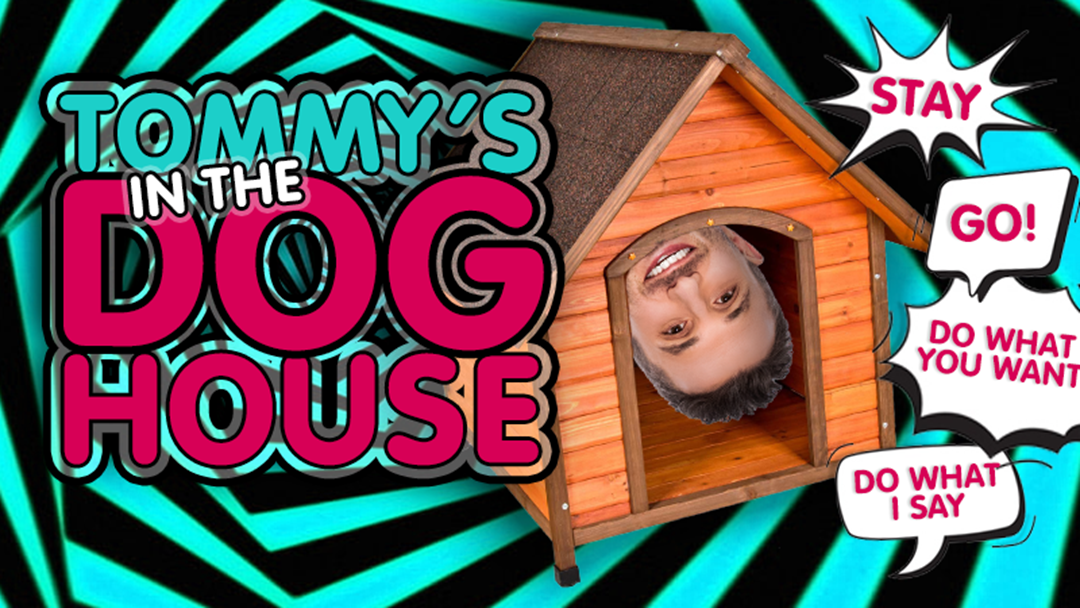 Article heading image for Tommy's In The Doghouse!