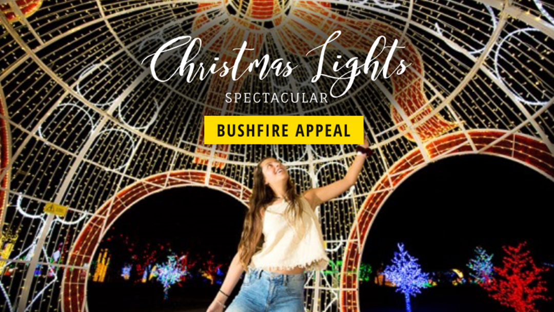 Article heading image for Hunter Valley Gardens Have Turned Their Christmas Lights Spectacular Into A Bushfire Appeal