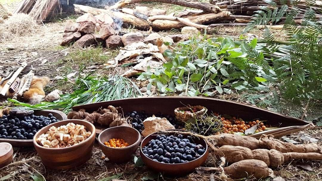 Article heading image for 7 Days Of Nothing But Bush Tucker For Mental Health Awareness
