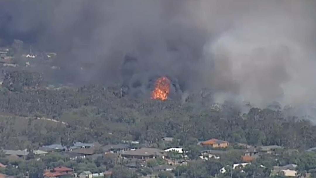 Article heading image for Bushfire Not Yet Under Control In Carrum Downs