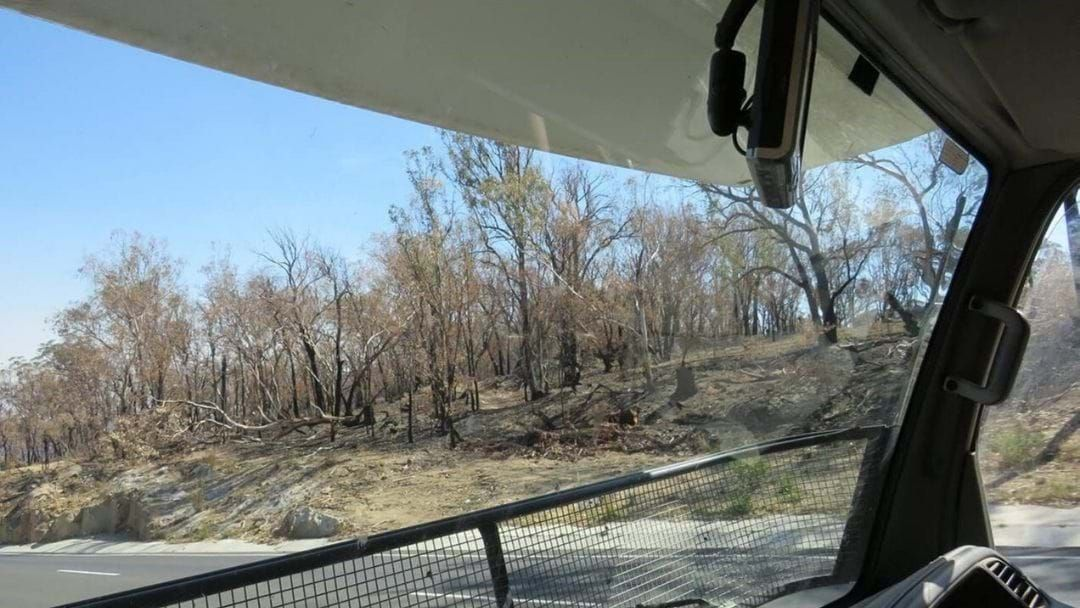 Article heading image for Here's How You Can Help With Drought & Bushfire Relief This Weekend!