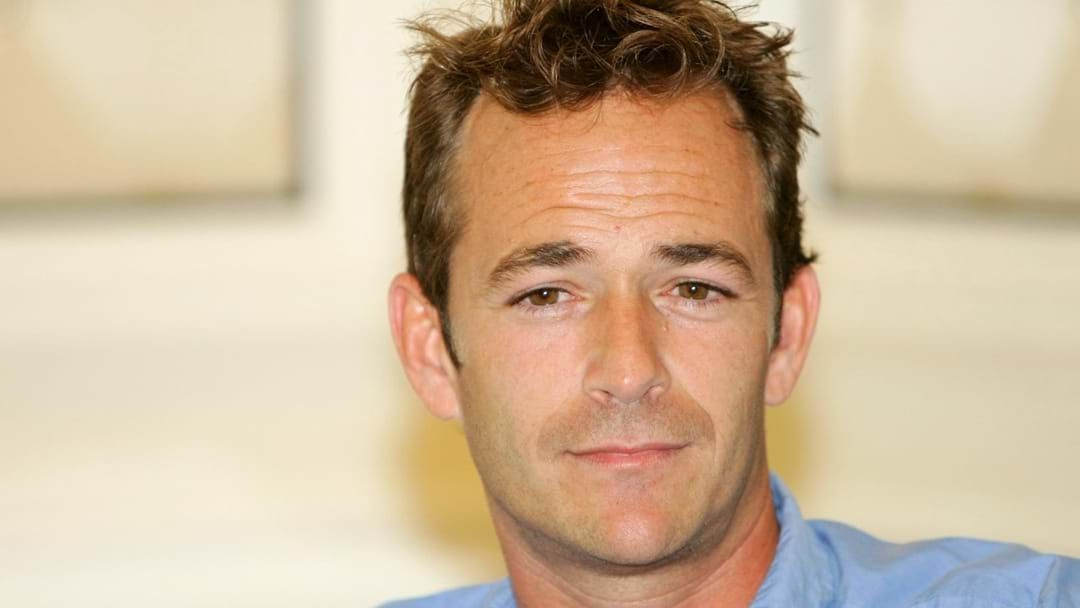 Article heading image for Hollywood Star Luke Perry, Dead 52
