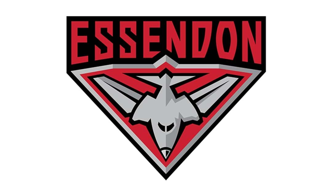 Article heading image for Essendon Has Advised Two Veterans They Won't Be Offered Contracts For 2018