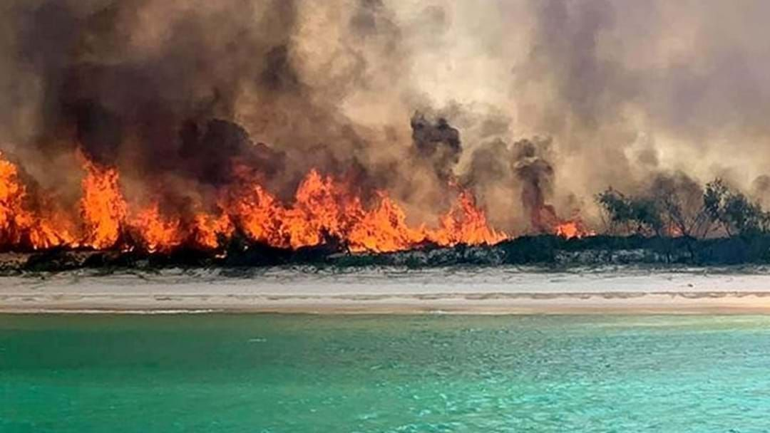 Article heading image for The Measures Being Taken To Prevent Another Fraser Island Fire