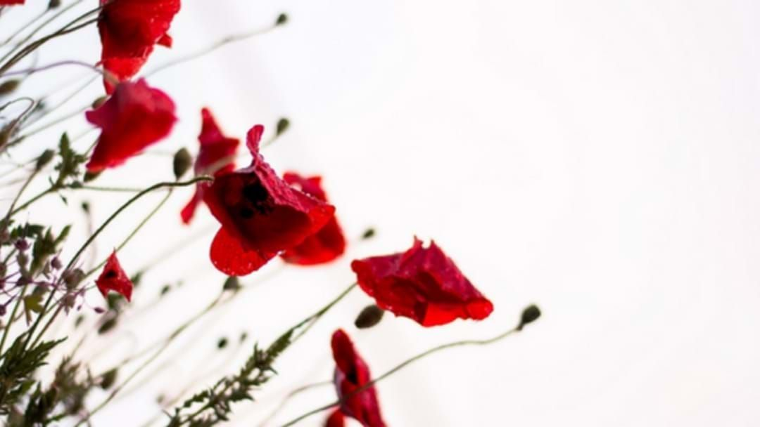 Article heading image for Our List Of Anzac Services Near You!
