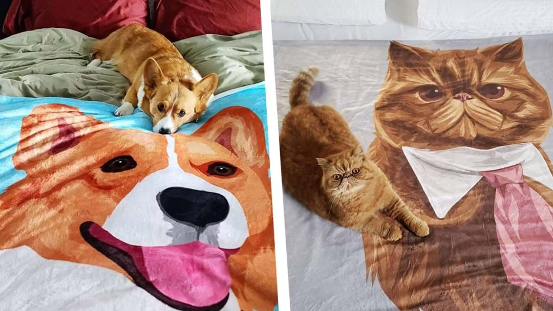 Article heading image for These Custom Pet Blankets Are Every Pet-Lover's Dream!