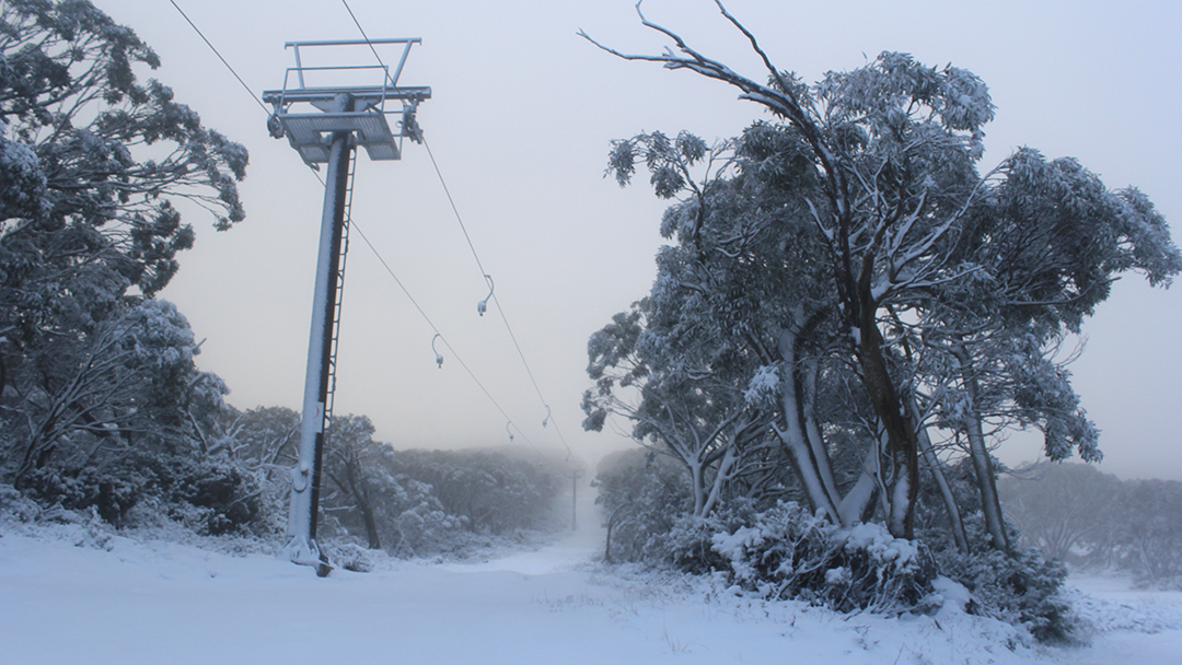 Article heading image for In A Bizarre Plot Twist, Victoria Could Experience SNOW Tomorrow Night