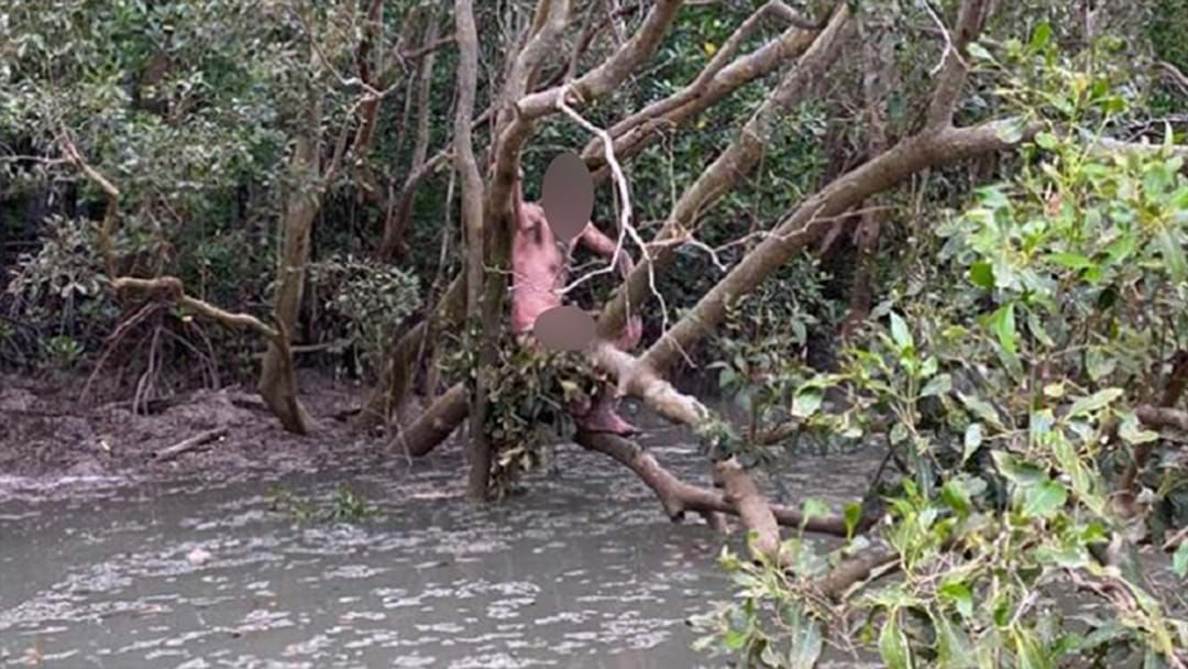 Article heading image for Two Blokes Rescued A Naked Alleged Fugitive From A Croc-Infested Swamp In Darwin