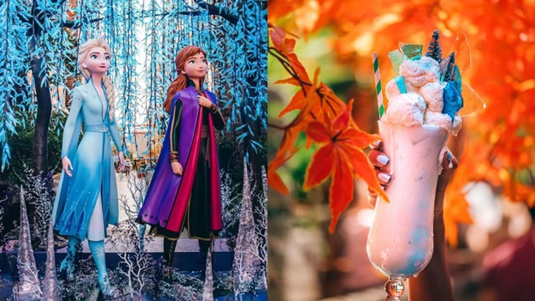 Article heading image for The Grounds Has Transformed Into A Magical 'Frozen' Wonderland
