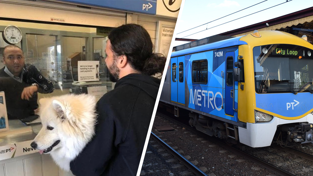 Article heading image for This Puppy Escaped Her Yard and Took a Train All By Herself