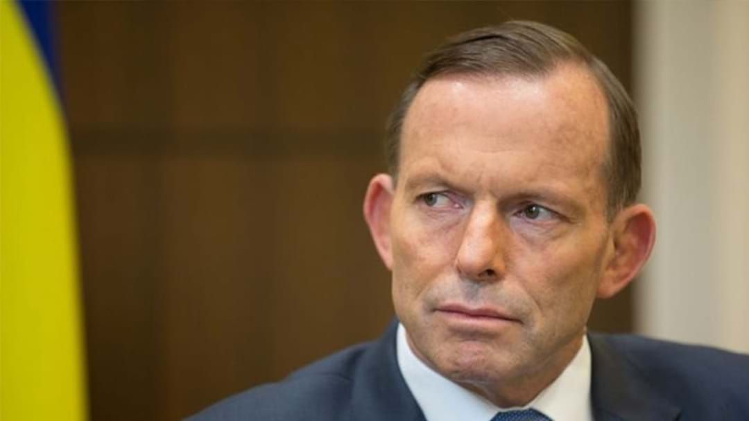 Article heading image for Tasmanian Man Pleads Guilty To Headbutting Tony Abbott