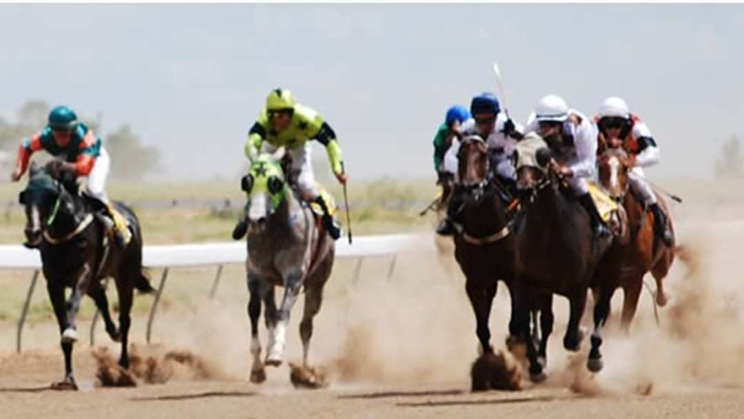 Article heading image for Riverina Wandoan Cup Race Day