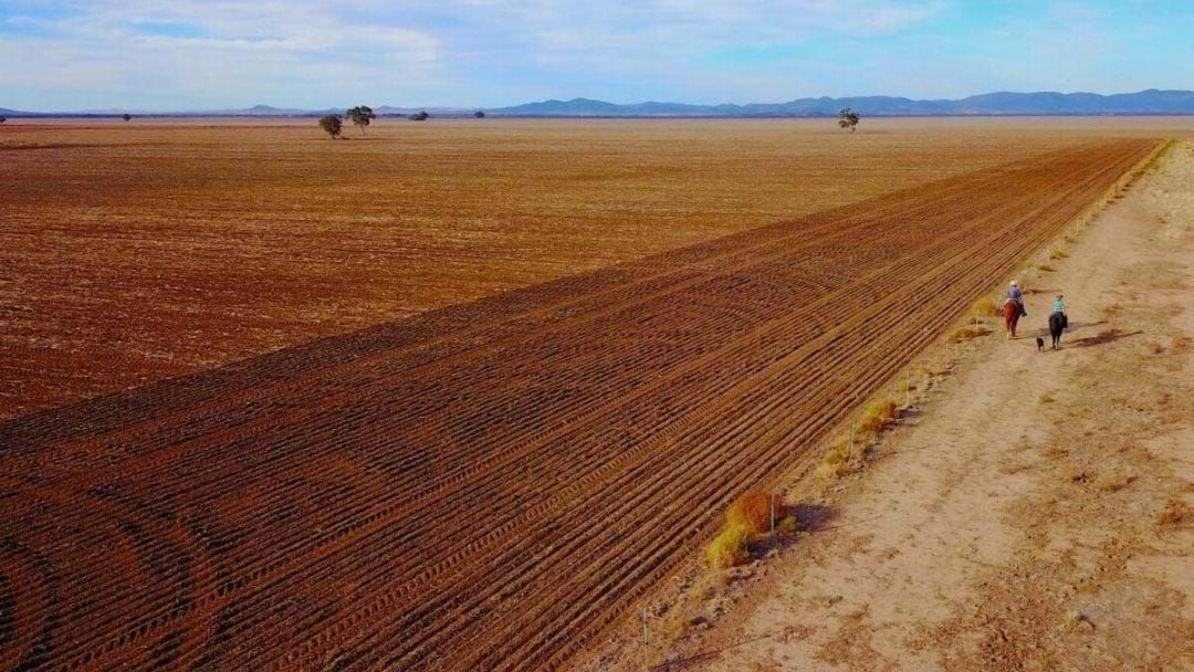 Article heading image for Australian Farmer Exposes The Impact Of The Current Drought Crisis On Mental Health