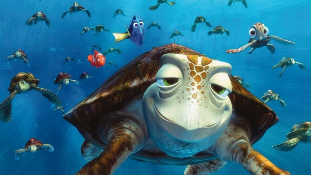 Article heading image for Turtley Terrific School Holiday Activity This Friday