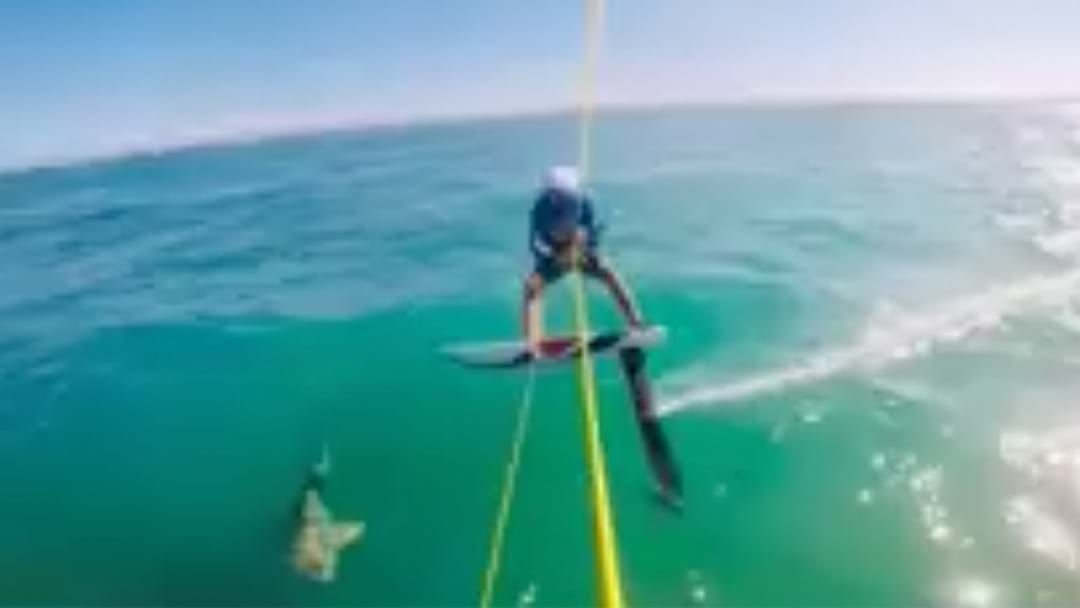 Article heading image for WATCH: GoPro Captures The Scary Moment A Kite Surfer Crashes Into Shark