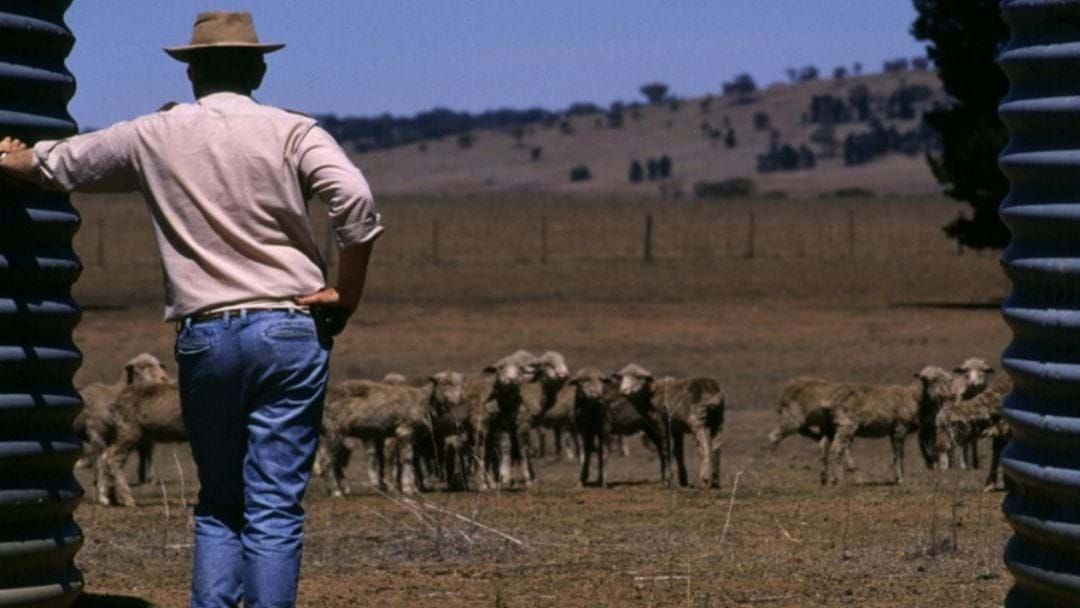 Article heading image for You Can Have Your Say On The Future Drought Fund!