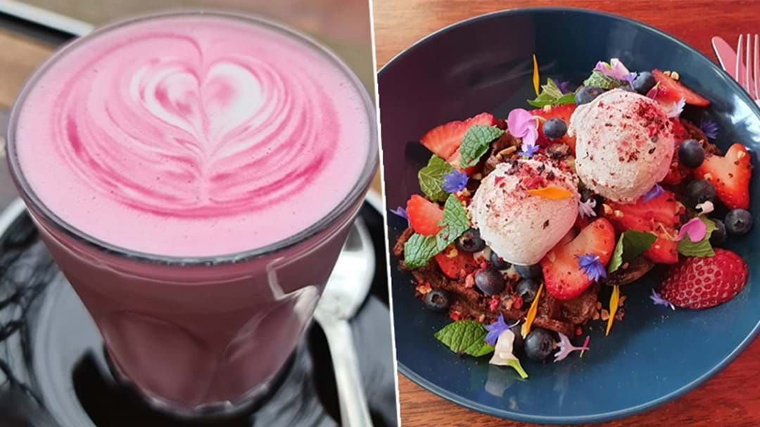 Article heading image for PSA: Adelaide Just Got Itself The Prettiest New Dessert Bar!
