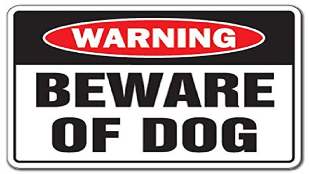 Article heading image for Two Bushland Beach Dogs Voluntarily Handed To Council After Dog Attack