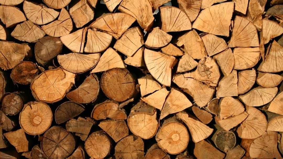 Article heading image for Autumn Firewood Collection Season Open!