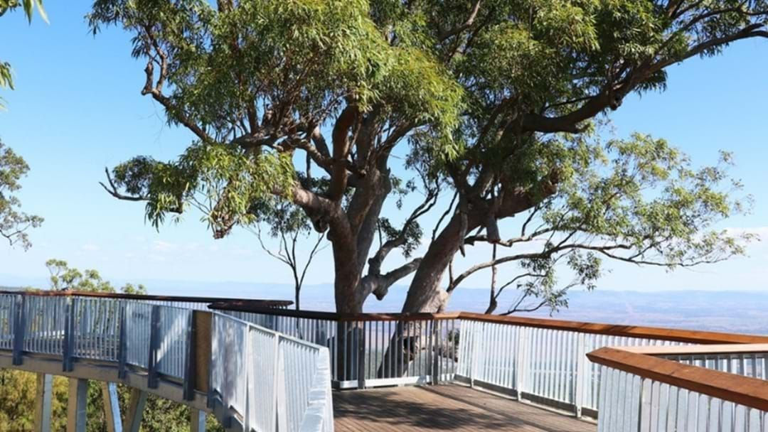 Article heading image for Mount Archer Broadwalk Awarded Regional Project Of The Year