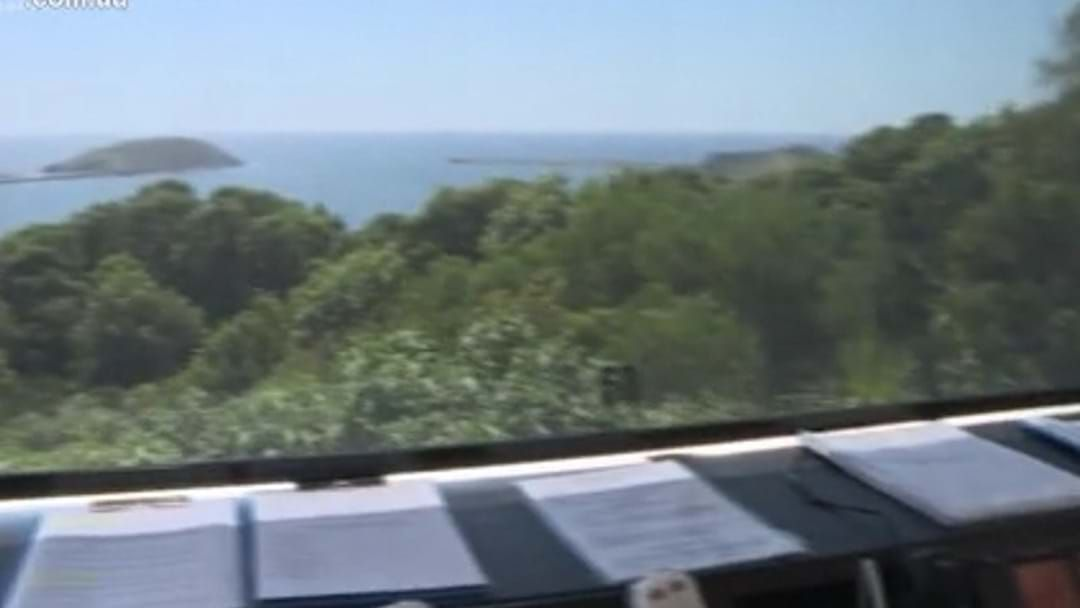 Article heading image for Coffs Council Speak About Overgrown Trees at Marine Rescue Lookout