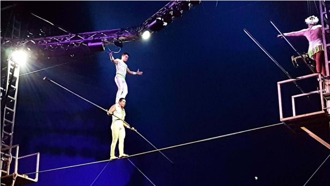 Article heading image for The Great Moscow Circus