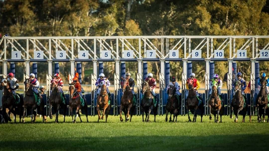 Article heading image for Towac Park 'Legends' Race Day Is Almost Here!
