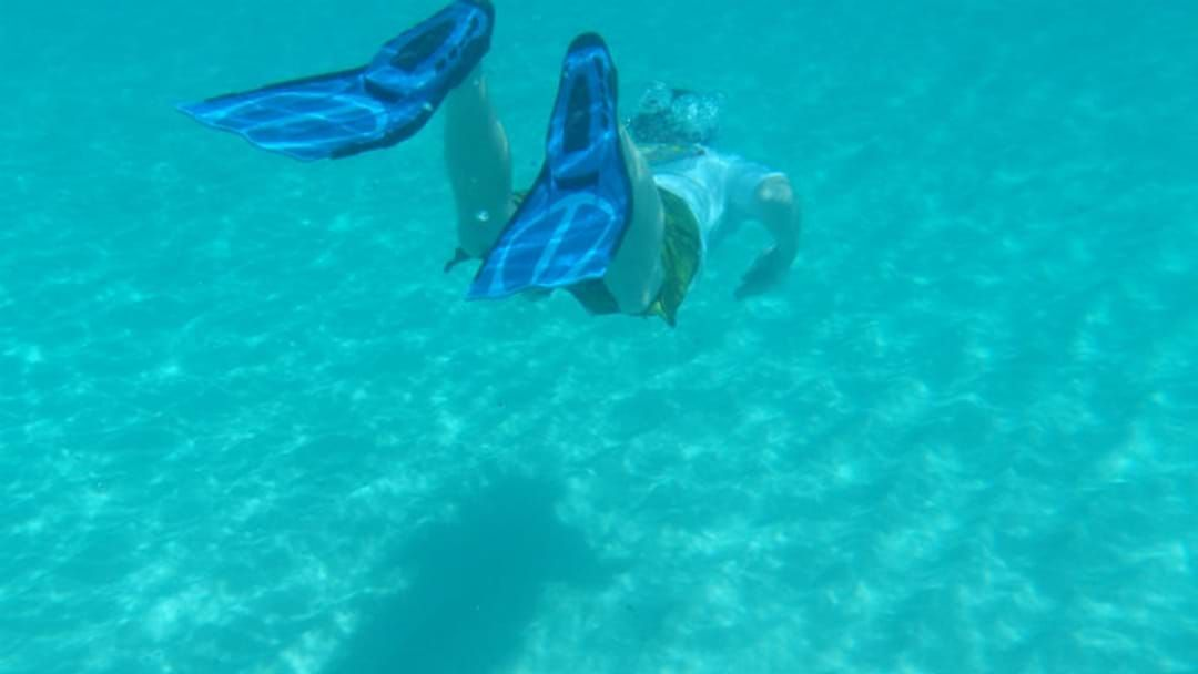 Article heading image for Yeppoon Snorkel Trip Goes Wrong
