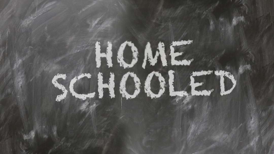 Article heading image for Sometimes, Home Schooling Your Kids Is The Only Available Option