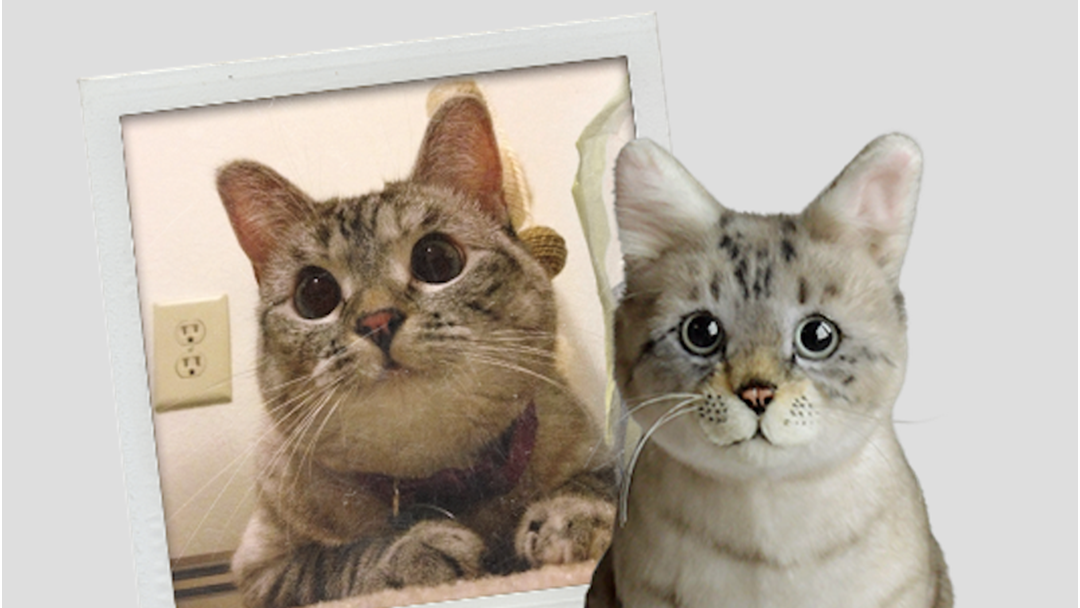 a96addf62e48 Article heading image for You Can Get EXACT Plush Toy Replicas Of Your Pets!