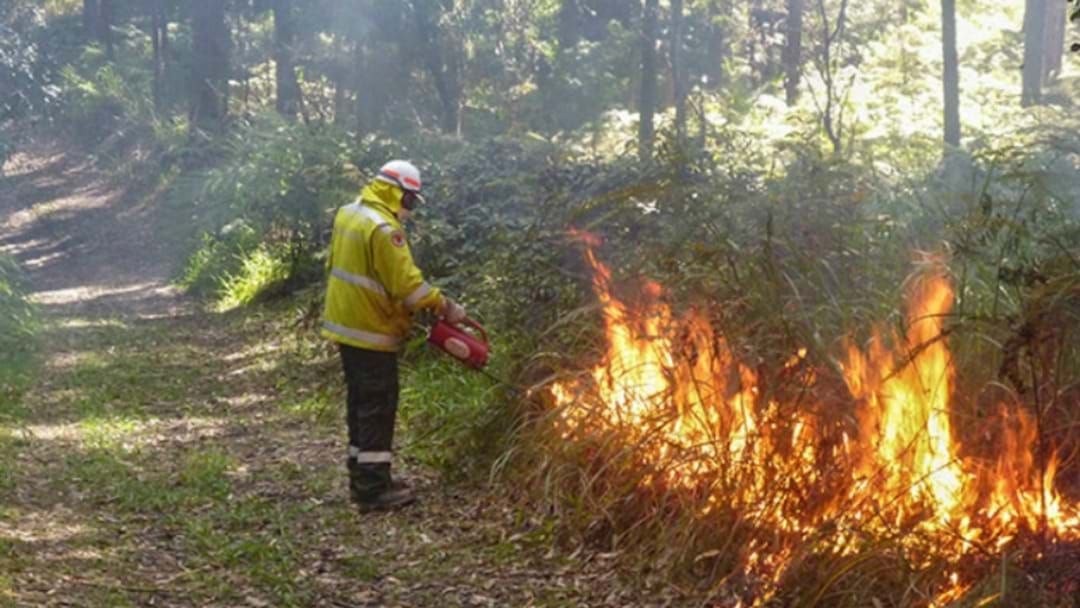 Article heading image for Early planned burn season is here with Kuranda first up.