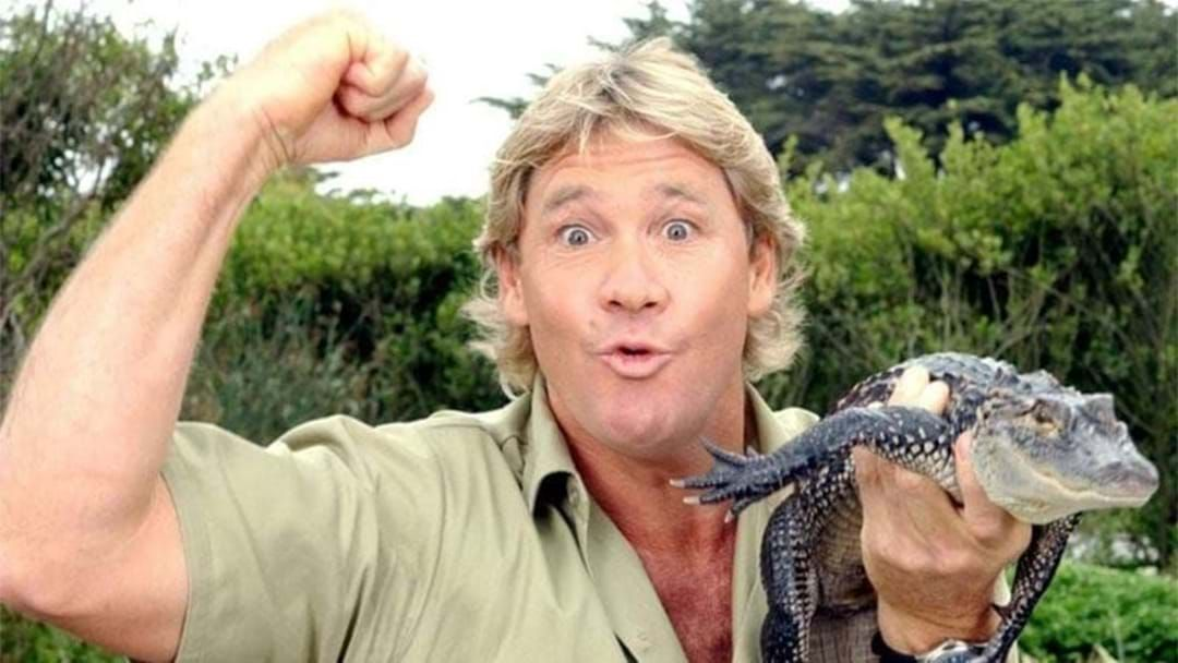 Article heading image for Scientist Jamie Seymour Tells Us What Happened On The Boat The Day Steve Irwin Died