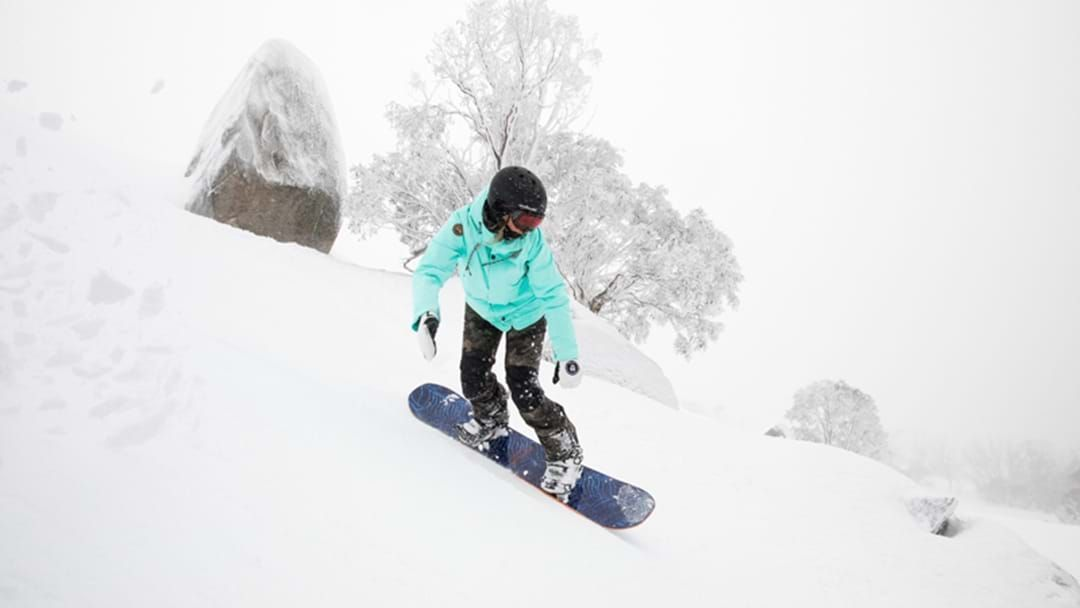 Article heading image for Fresh snow and great conditions at our ski fields!