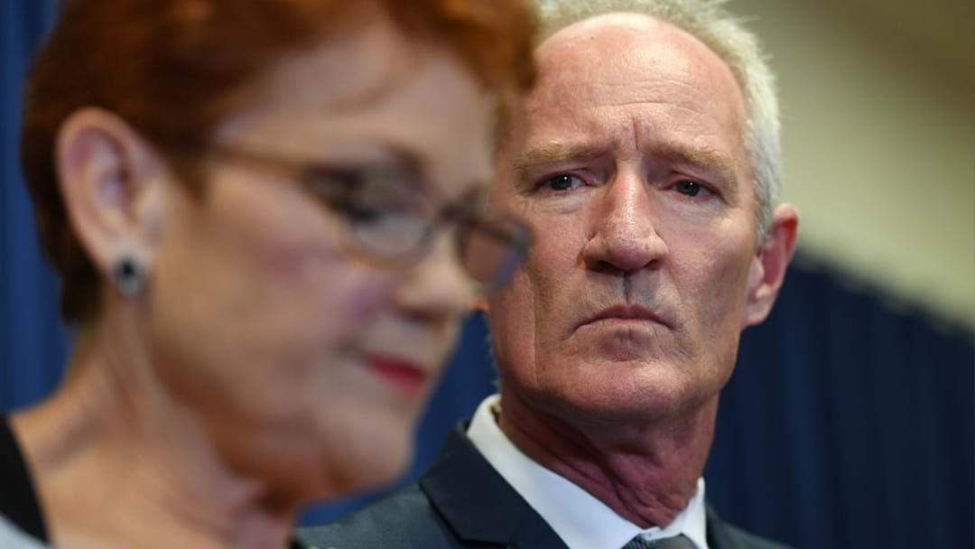 Article heading image for One Nation's Steve Dickson Resigns As Undercover Strip Club Footage Emerges