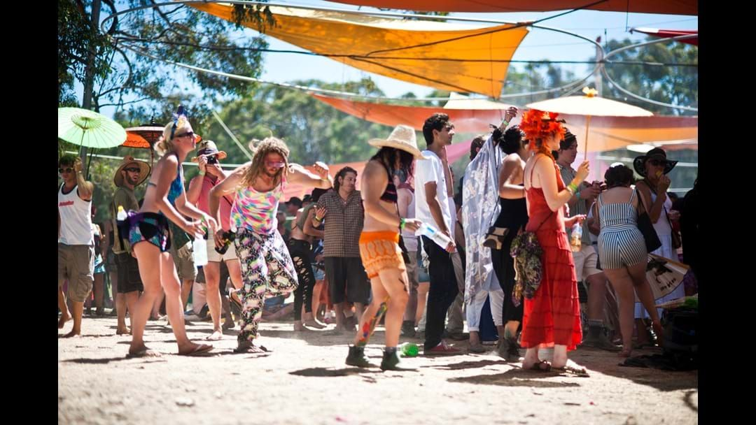Article heading image for Secret Music Festival Under Fire From Council