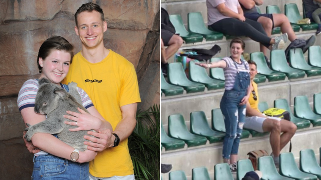 Article heading image for Australia Zoo Bird Show Viral Proposal Needed Permission From This Special Person