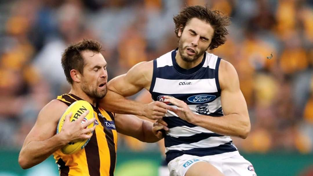 Article heading image for Luke Hodge Speaks About The Whack He Copped From Cats Youngster James Parsons
