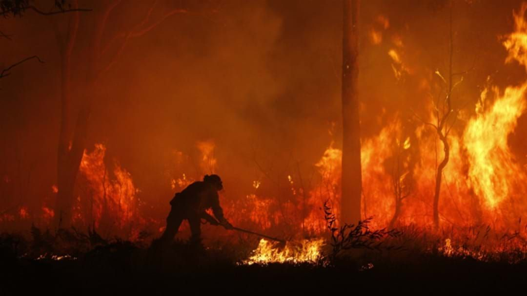 Article heading image for CommBank Announce Grant Support For Recovering Bushfire Communities